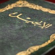 Arabic New Testament — Stock Photo #7437735