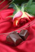 Chocolate and rose — Stock Photo
