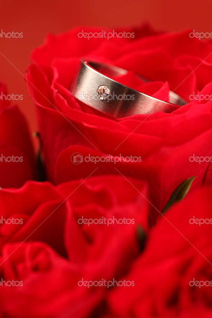 Titanium engagement ring with diamond in red rose. Shallow dof  Stock Photo #7437426