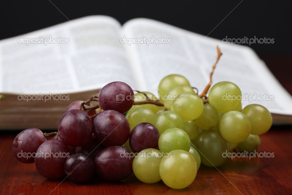 Grapes and the Bible in the background. Concept of Jesus being a Vine (John 15). — Lizenzfreies Foto #7438135