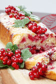 Red currant sponge cake — Foto de Stock