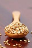Roasted sesame seeds — Stock Photo