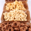 Chocolate and honey cereals — Stock Photo