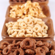 Chocolate and honey cereals — Stock fotografie