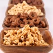 Honey and chocolate cereals — 图库照片