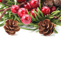 Cone and berry Christmas border — Stock Photo