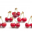 Fresh Cherries - Stockfoto
