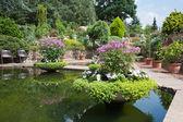 Ornamental garden with beautiful pond — Stock Photo