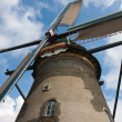 Front view of a historic Windmill in the Netherlands — Foto de Stock