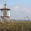 Pigeon house in dutch rural landscape — Stock Photo