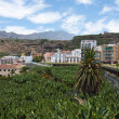 BananPlantation near Tazacorte, LPalma, Canary Islands — стоковое фото #7519263