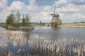 オランダの古い歴史的な風車 — ストック写真