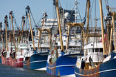 Dutch harbor with modern fishing cutters — Stock Photo