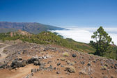 Volcanic landscape of La Palma, Canary Islands — Stock Photo