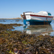 Boat at ebb tide in Bretagne, France — Stock Photo