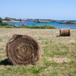 Haystack at island Brehat in Bretagne, France — Stock Photo