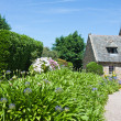 Traditional house  with garden in bretagne, France — Stock Photo