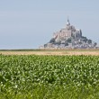 Mont Saint Michel in Normandy — Stock Photo