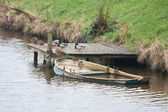 Ducks at the bank of a canal with a half sunken rowboat — Stock Photo