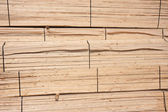 Wooden planks waiting for transport to the factory — Stock Photo
