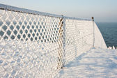 Fence with hoarfrost in the winter — Stock Photo