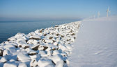 Virgin snow along the endless coast in the netherlands — Stock Photo