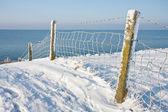 Snowy fence near the coast of the Netherlands — Stock Photo