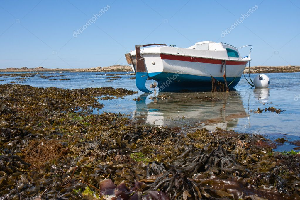 Small boat at ebb tide in Bretagne, France  Stock Photo #7547790