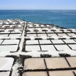 Salt extraction at La Palma, Canary Islands — Stock Photo