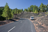 Road through volcanic landscape, La palma — Stock Photo