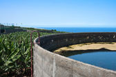 Irrigation basin in banana plantation at La Palma — Foto Stock
