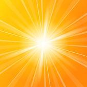 Sunshine vector background — Stock Vector