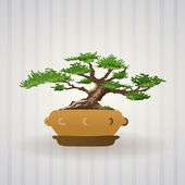 Bonsai Tree Vector Art — Stock Vector