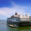 Cruise ship in harbour — Stock Photo #7920490