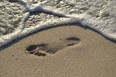 Footprint in the sand — Stock Photo