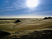 пустыне на закате — Стоковое фото
