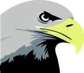 Eagle illustration — Stockfoto
