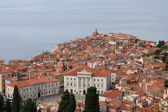 Small town in Slovenia — Stockfoto