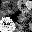 Black and white floral background - Stock Photo
