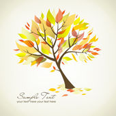 Beautiful Autumn Tree — Foto de Stock