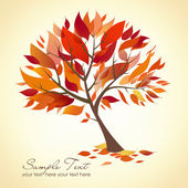 Beautiful Autumn Tree — 图库照片