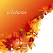 Autumn Background - Photo