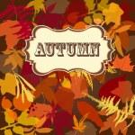 Autumn leaves background — Stock Photo #7550594
