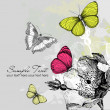 Butterfly Background — Foto de Stock