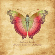 Stock Photo: Hand drawn butterfly in vintage style