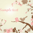 Spring Blossom background — Foto de Stock
