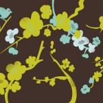 Sakura in blossom — Stock Photo