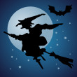 Halloween flying witch and the moon — Stock Photo