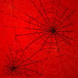 Halloween Spiders web - Stock Photo