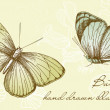Stockfoto: Vintage Butterfly Set